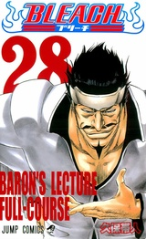 Bleach, Vol. 28