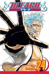 Bleach, Volume 24