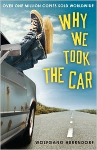 Обложка Why We Took the Car