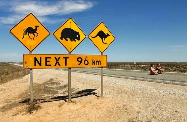 Книги про Австралию на Readly